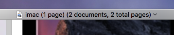 The title says two documents so the documents are not merged.